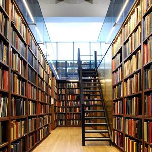 Библиотеки Новосокольников