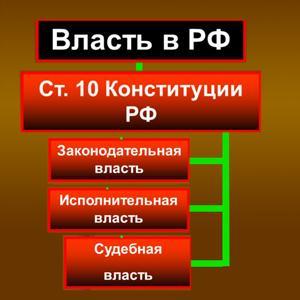 Органы власти Новосокольников
