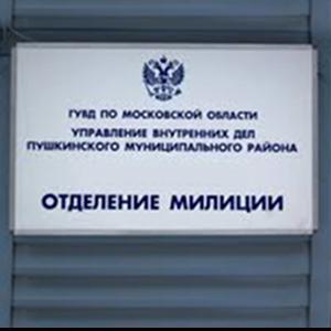 Отделения полиции Новосокольников