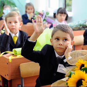 Школы Новосокольников