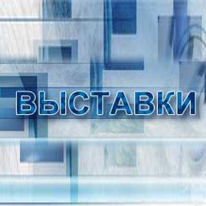 Выставки Новосокольников